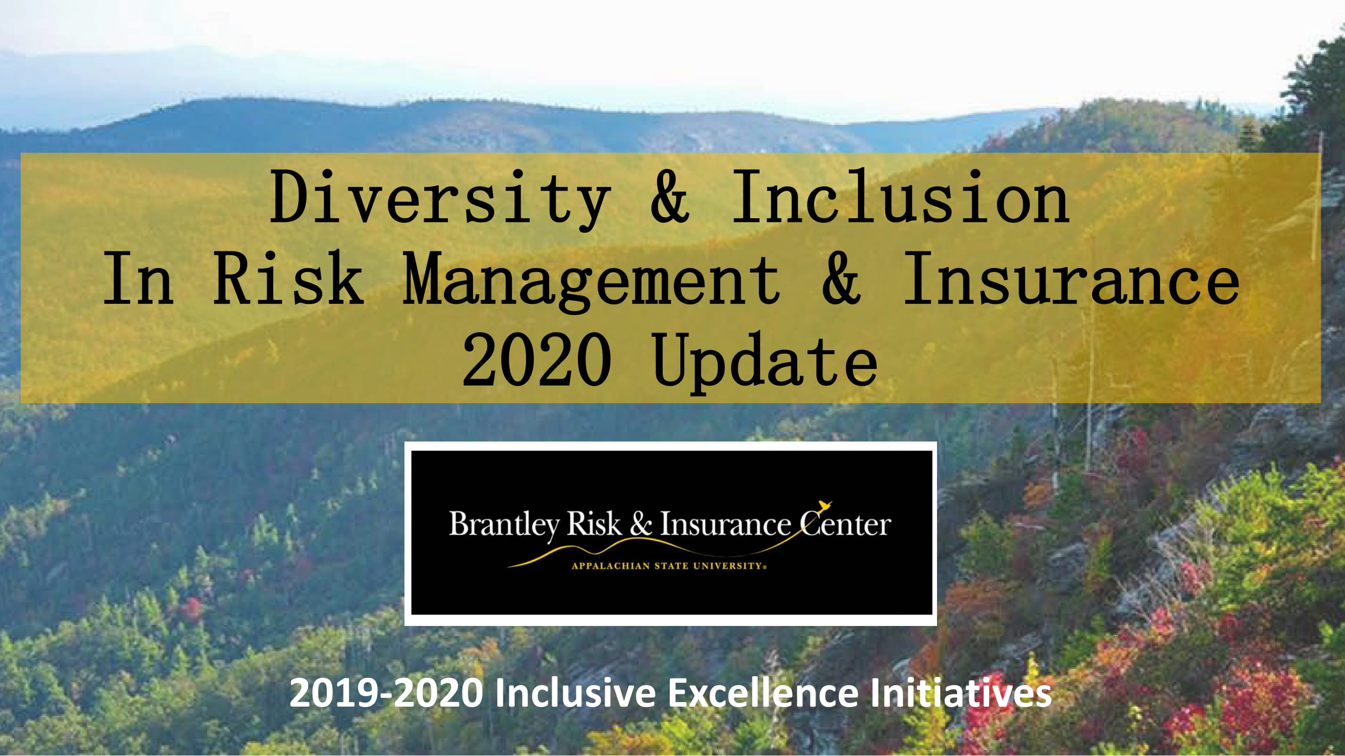 Brantley Center Diversity & Inclusion Report