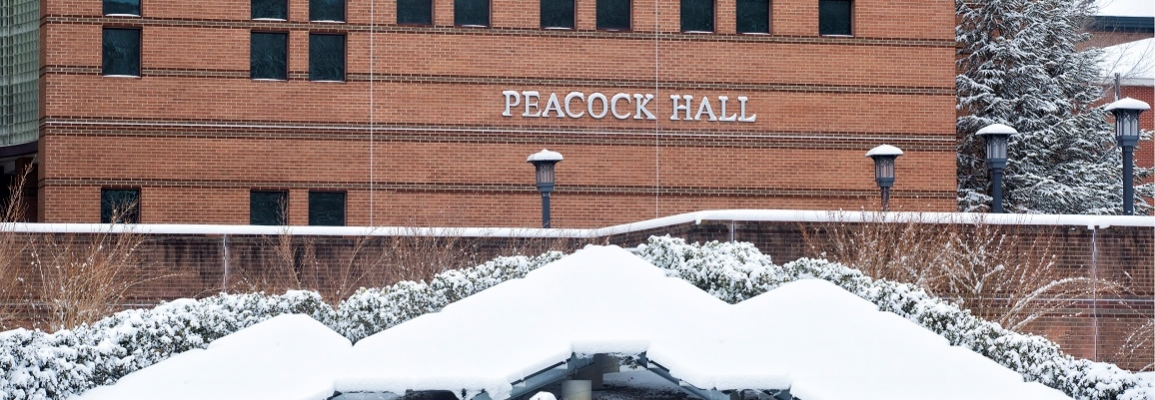 Peacock Hall in Snow